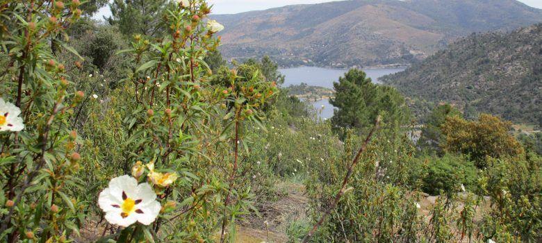 Valle de Iruelas des la senda de las viboras