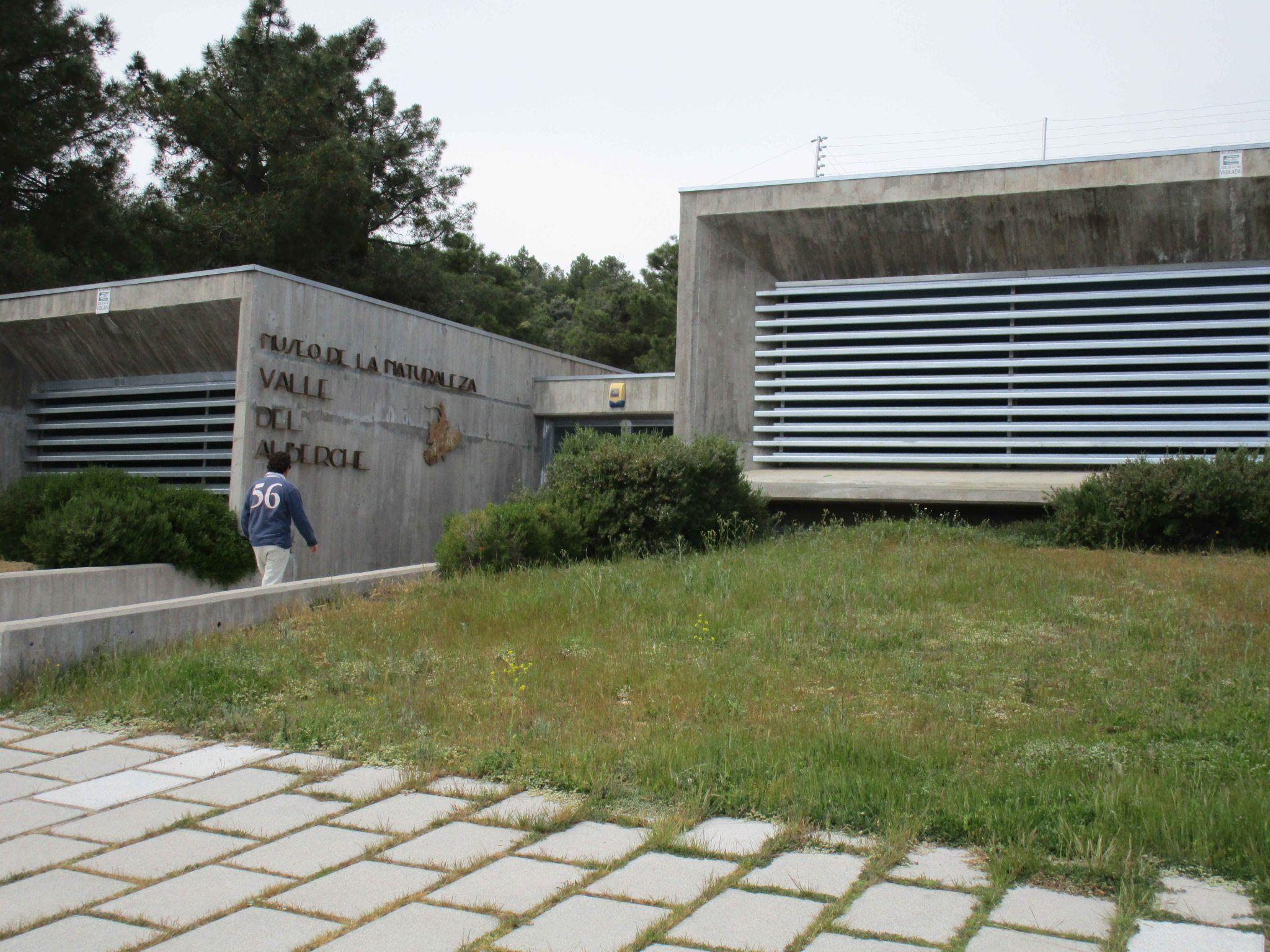 Visita y taller en el Museo de la Naturaleza