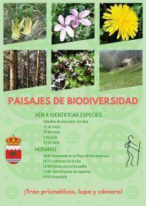 Ruta 'Paisajes de Biodiversidad' en Navarrevisca @ Navarrevisca | Navarrevisca | Castilla y León | España