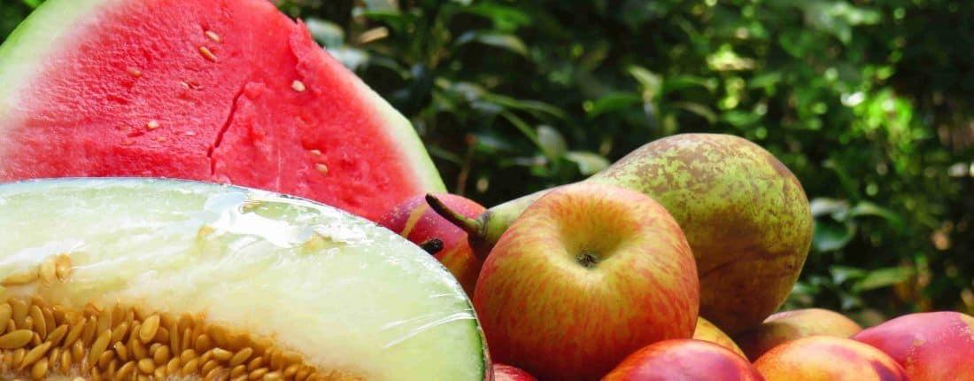 Por una alimentación saludable en verano