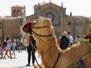 Sábado en el Mercado Medieval @ Centro de la ciudad | Ávila | Castilla y León | España