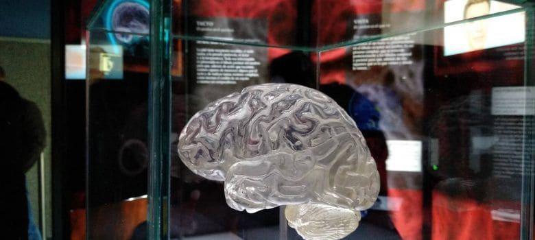 Ilusionismo, magia o ciencia tratada 2