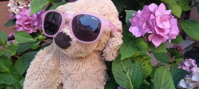 perro aecc hortensias